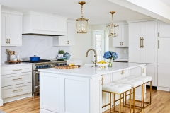 Transitional white painted shaker kitchen with gold accents- Allandcabinet